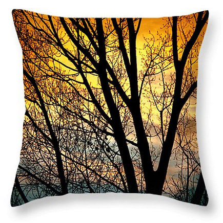 "Colorful Sunset Silhouette Throw Pillow 20"" x 20"""