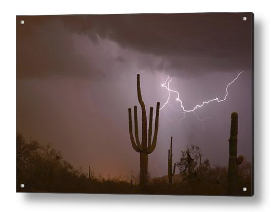 Saguaro Southwest Desert Lightning Air Strike Acrylic Prints