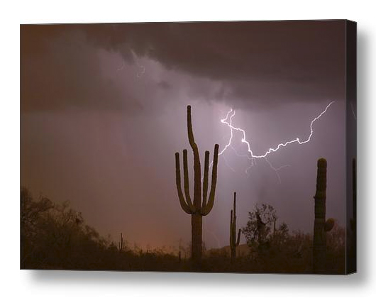 Saguaro Southwest Desert Lightning Air Strike Canvas Print