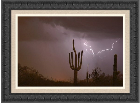 Saguaro Southwest Desert Lightning Air Strike Framed Print