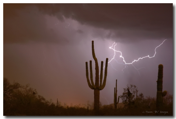 Lightning striking in the Sonoran desert air, cloud to cloud lightning strike in Arizona a view into the beautiful southwest America desert during monsoon storm season. Fine art nature landscape weather photography fine art prints, framed prints, canvas prints, acrylic prints, metal prints, phone cases, throw pillows, duvet covers, greeting cards and stock images by James Bo Insogna (C) - All Rights Reserved. Please feel Free to share our links, with Family or Friends who may also enjoy them. If you like my Art Gallery, please spread the word and press the Pinterest, FB, Google+, Twitter or SU Buttons! Thank you! *PLEASE NOTE, WATERMARKS WILL NOT BE ON THE PURCHASE PRINTS*