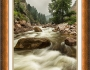 South St Vrain Canyon Portrait Boulder CountyColorado