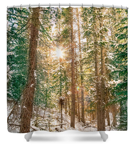 Winter Forest Sunshine Shower Curtain