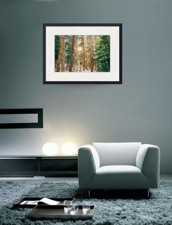 Winter-Forest-Sunshine_art_prints